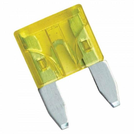 20 Amp Blade Fuse